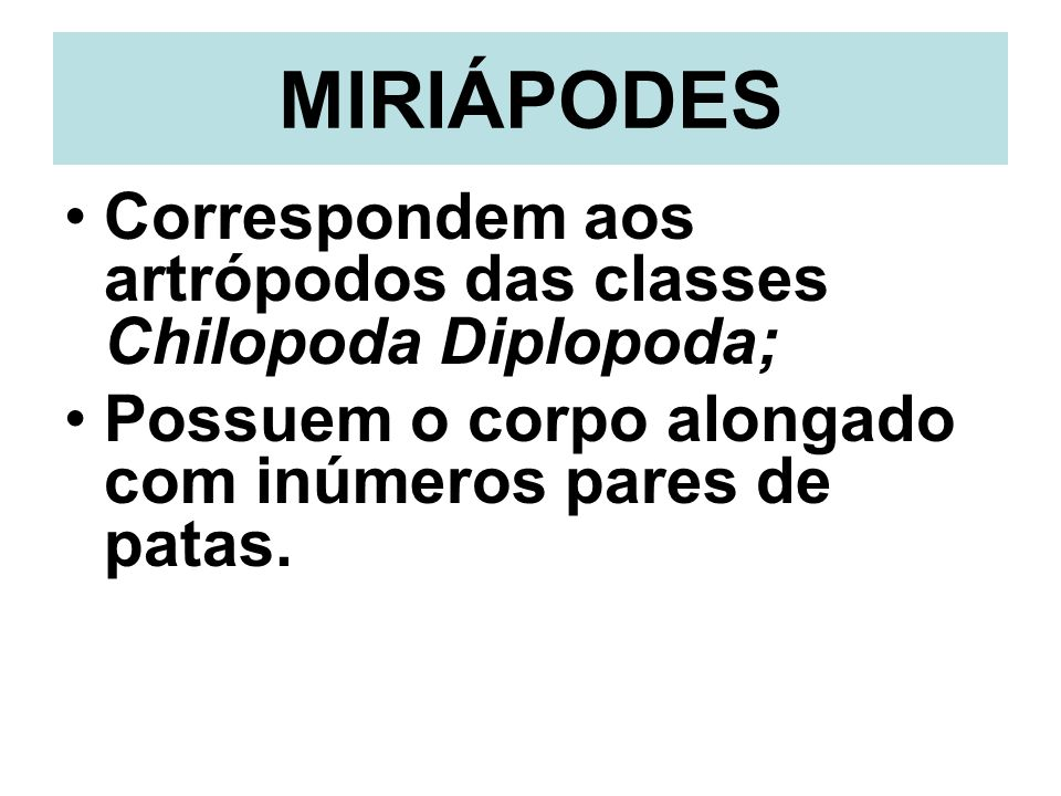 MIRIÁPODES Correspondem aos artrópodos das classes Chilopoda Diplopoda; Possuem o corpo alongado com inúmeros pares de patas.
