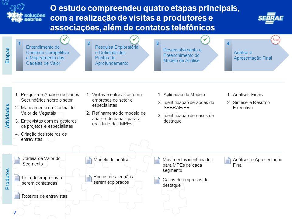 18 Caracterização das Organizações Analisadas Visão Detalhada – Integradoras Integradoras Segmento Como compete.