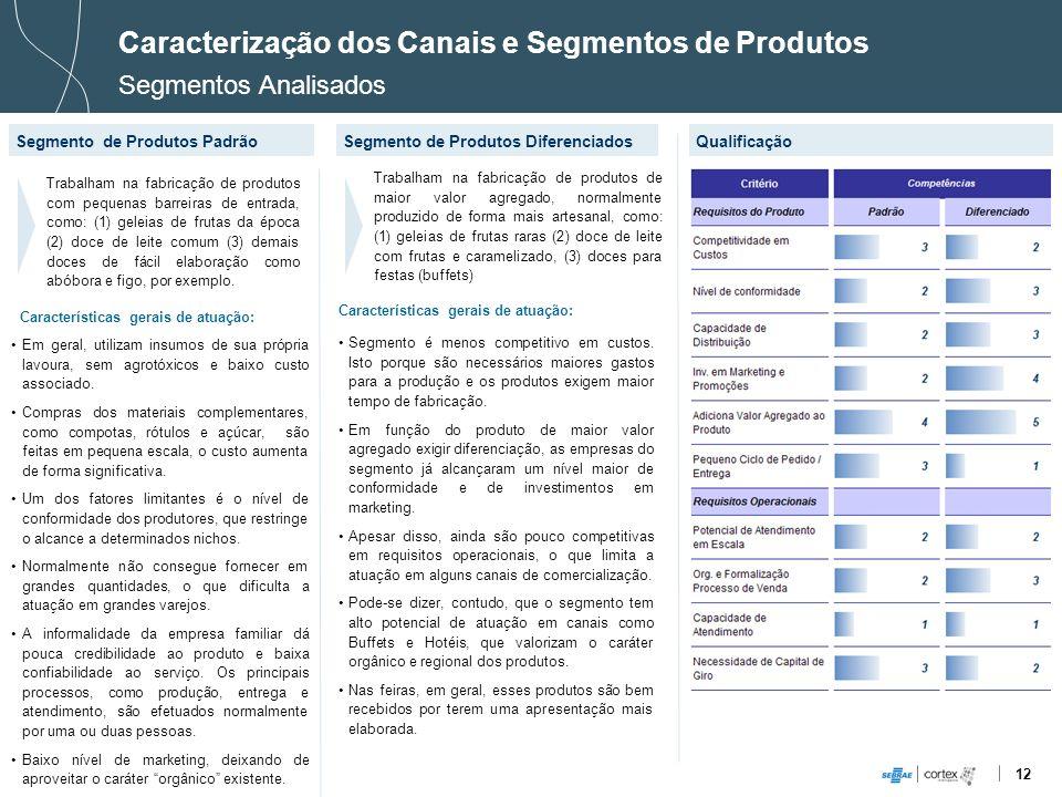 12 Caracterização dos Canais e Segmentos de Produtos Segmentos Analisados Segmento de Produtos PadrãoQualificação Trabalham na fabricação de produtos