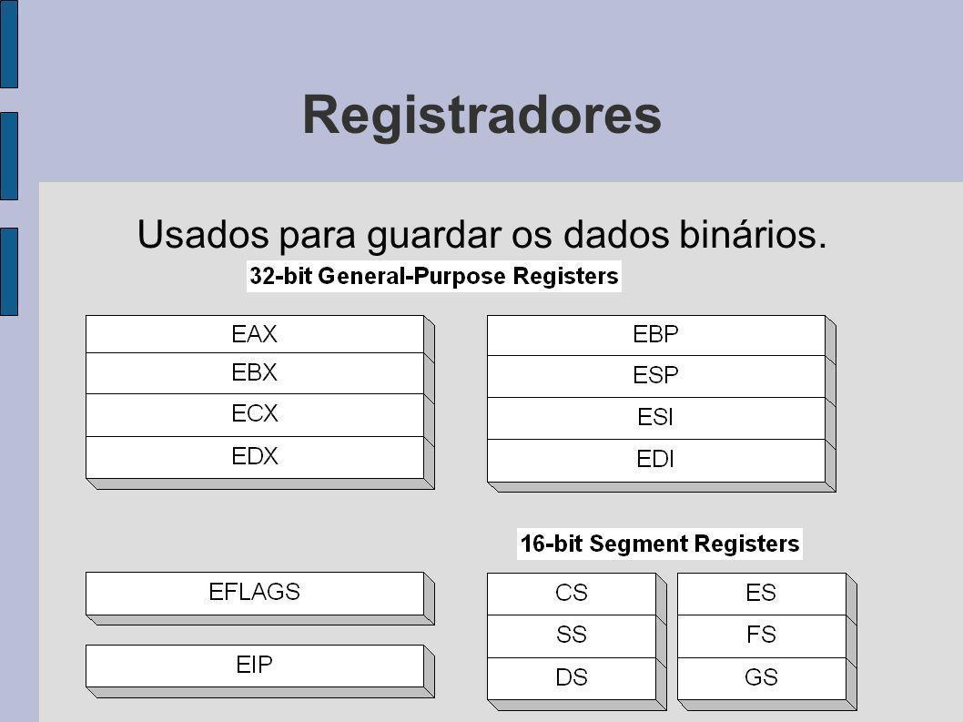 Registradores Usados para guardar os dados binários.