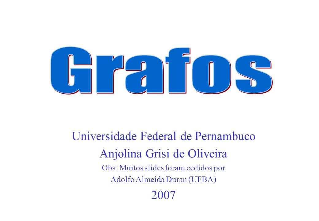 Universidade Federal de Pernambuco Anjolina Grisi de Oliveira Obs: Muitos slides foram cedidos por Adolfo Almeida Duran (UFBA) 2007