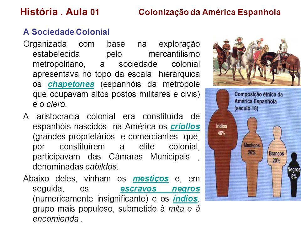 História. Aula 01 Colonização da América Espanhola A Sociedade Colonial Organizada com base na exploração estabelecida pelo mercantilismo metropolitan