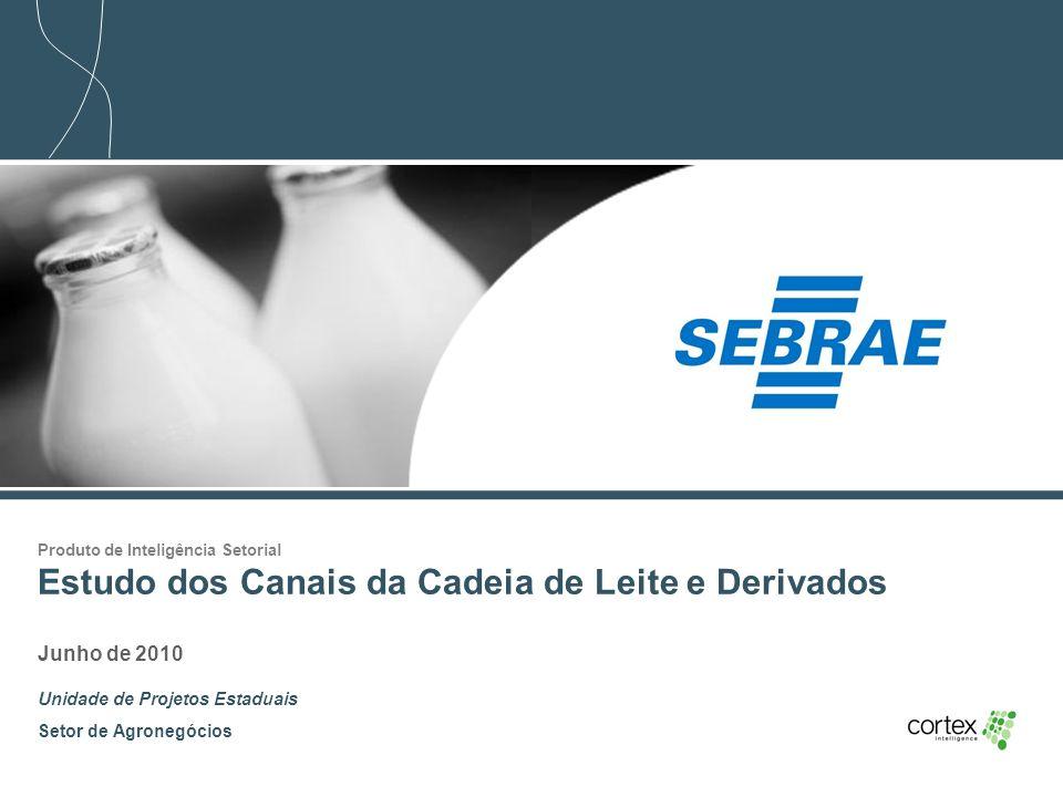 1 Produto de Inteligência Setorial Estudo dos Canais da Cadeia de Leite e Derivados Junho de 2010 Unidade de Projetos Estaduais Setor de Agronegócios