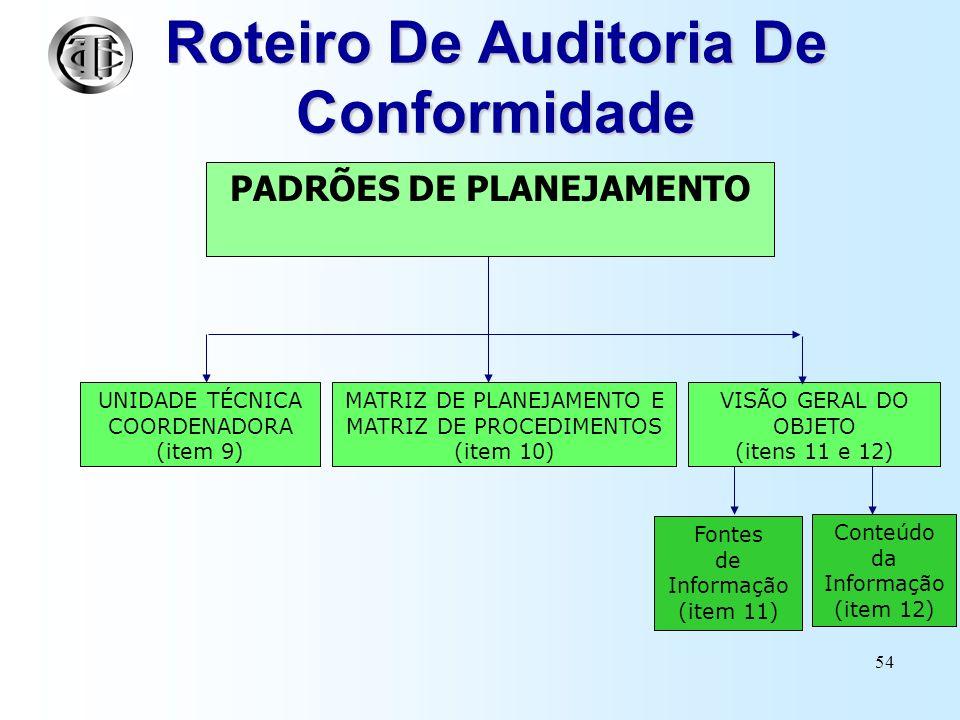 53 NORMAS DE AUDITORIA (PLANEJAMENTO) INTOSAI - International Organization of Supreme Audit Institutions IFAC - International Federation of Accountans CFC - Conselho Federal de Contabilidade