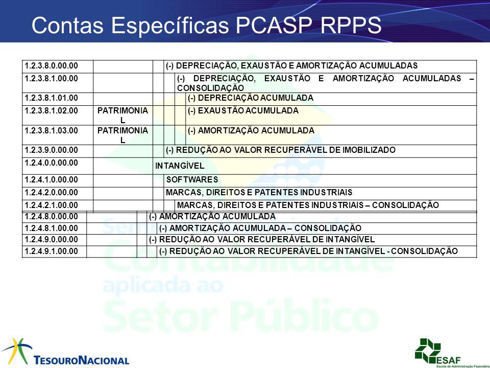 Contas Específicas PCASP RPPS 1.2.3.8.0.00.00 (-) DEPRECIAÇÃO, EXAUSTÃO E AMORTIZAÇÃO ACUMULADAS 1.2.3.8.1.00.00(-) DEPRECIAÇÃO, EXAUSTÃO E AMORTIZAÇÃ