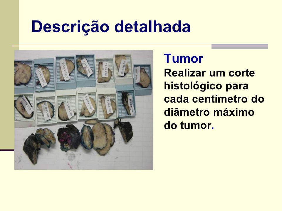 Descrição detalhada - Tumor Realizar um corte histológico para cada centímetro do diâmetro máximo do tumor.