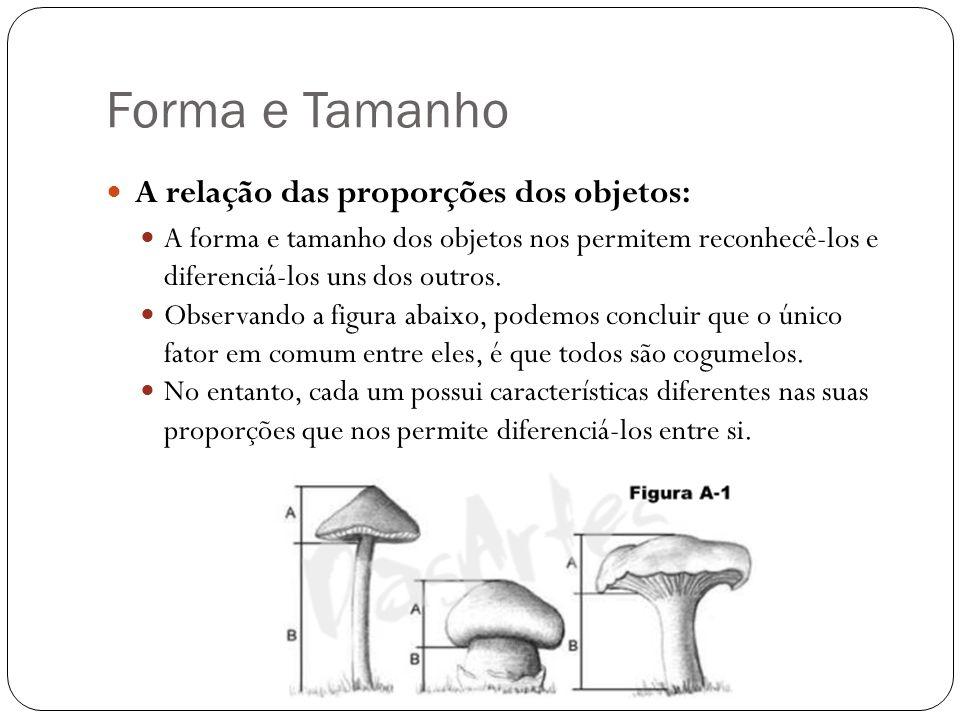 Forma e Tamanho A relação das proporções dos objetos: A forma e tamanho dos objetos nos permitem reconhecê-los e diferenciá-los uns dos outros. Observ