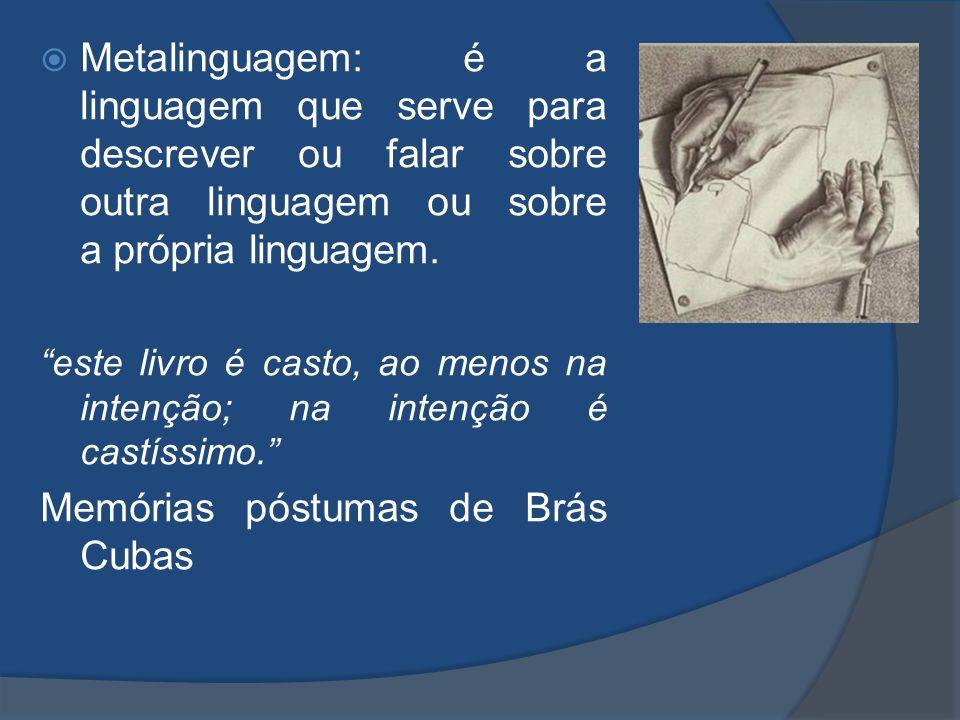 Metalinguagem: é a linguagem que serve para descrever ou falar sobre outra linguagem ou sobre a própria linguagem. este livro é casto, ao menos na int