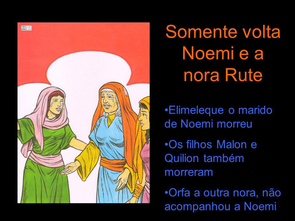Somente volta Noemi e a nora Rute Elimeleque o marido de Noemi morreu Os filhos Malon e Quilion também morreram Orfa a outra nora, não acompanhou a No