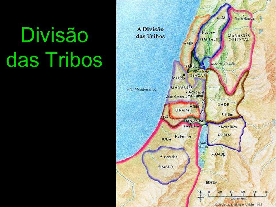 Divisão das Tribos