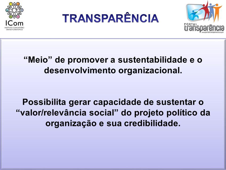 Considerações sobre mobilização, aplicação e gestão de recursos pelas ONGs