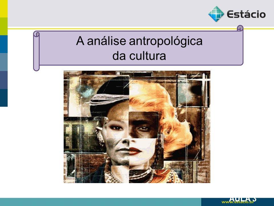 A análise antropológica da cultura AULA 3