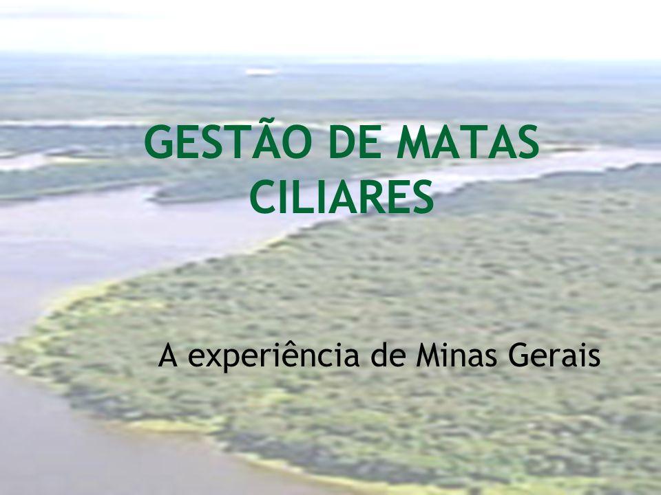 GESTÃO DE MATAS CILIARES A experiência de Minas Gerais