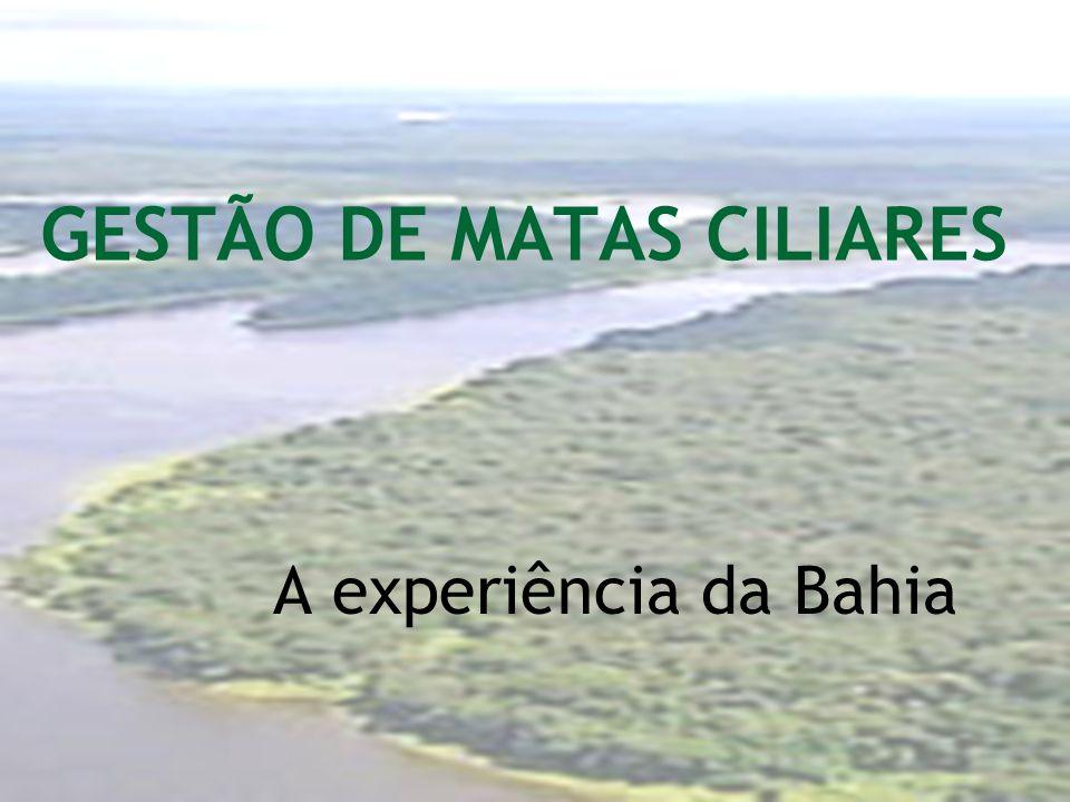 GESTÃO DE MATAS CILIARES A experiência da Bahia