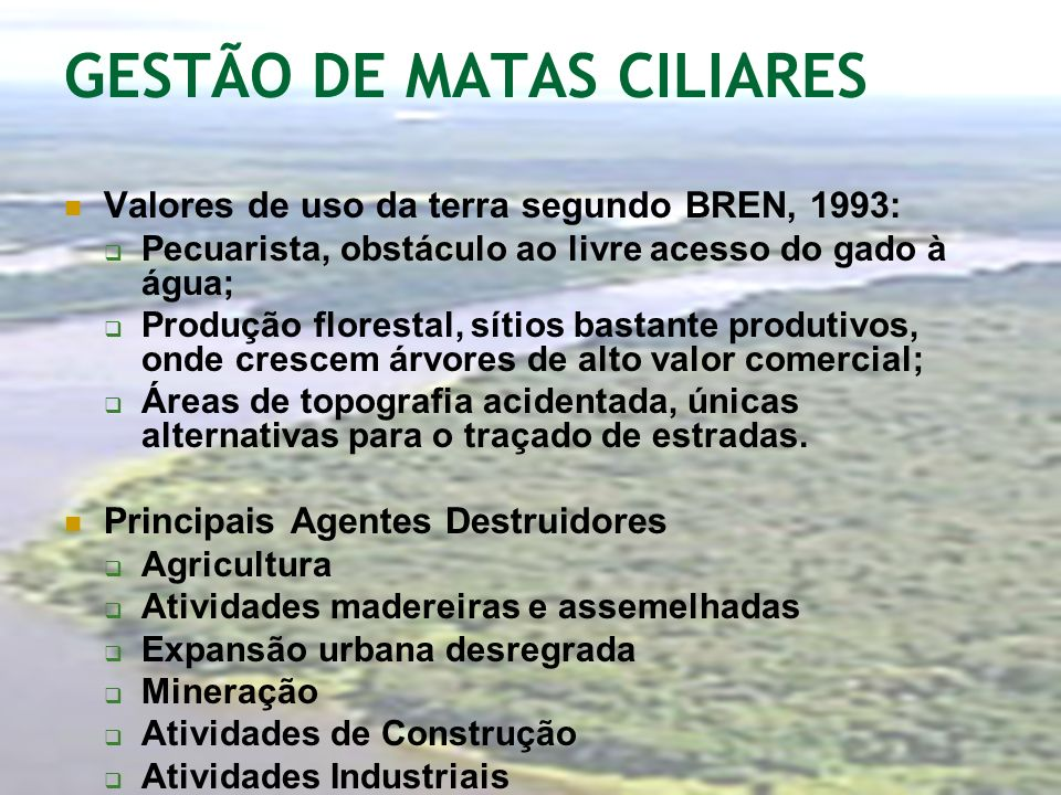 GESTÃO DE MATAS CILIARES Valores de uso da terra segundo BREN, 1993: Pecuarista, obstáculo ao livre acesso do gado à água; Produção florestal, sítios
