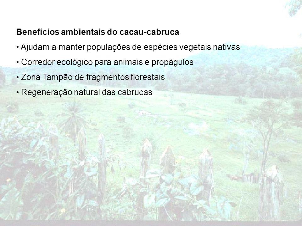 Benefícios ambientais do cacau-cabruca Ajudam a manter populações de espécies vegetais nativas Corredor ecológico para animais e propágulos Zona Tampã