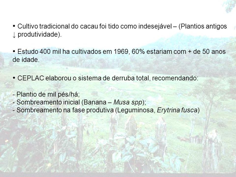 Cultivo tradicional do cacau foi tido como indesejável – (Plantios antigos produtividade). Estudo 400 mil ha cultivados em 1969, 60% estariam com + de