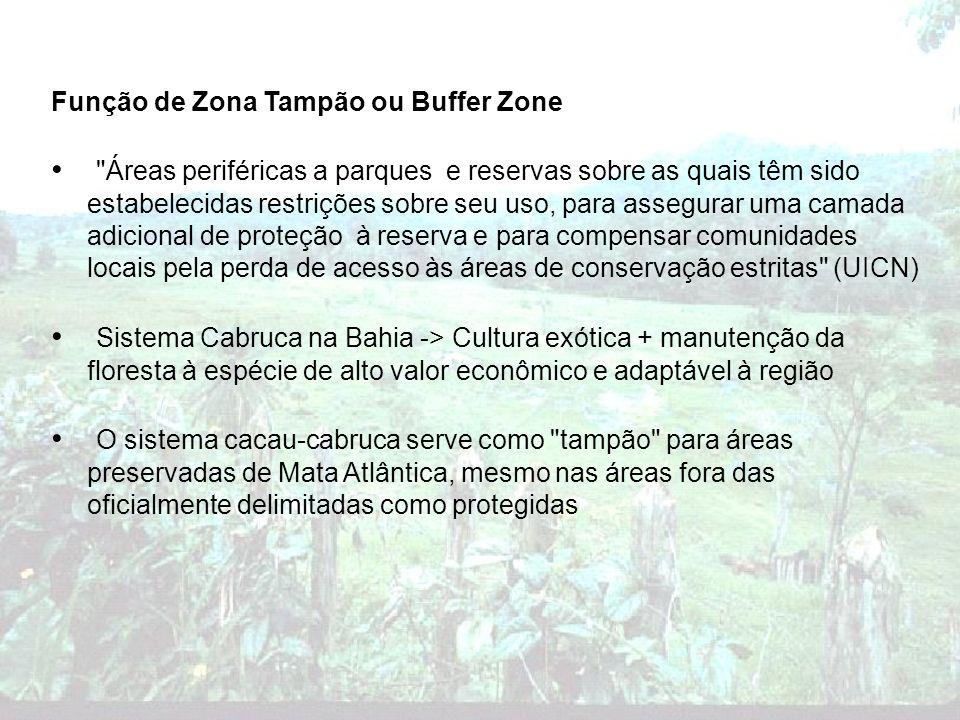 Função de Zona Tampão ou Buffer Zone
