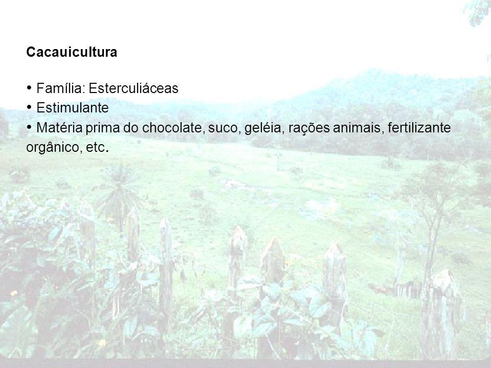 Cacauicultura Família: Esterculiáceas Estimulante Matéria prima do chocolate, suco, geléia, rações animais, fertilizante orgânico, etc.
