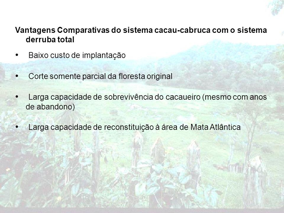 Vantagens Comparativas do sistema cacau-cabruca com o sistema derruba total Baixo custo de implantação Corte somente parcial da floresta original Larg