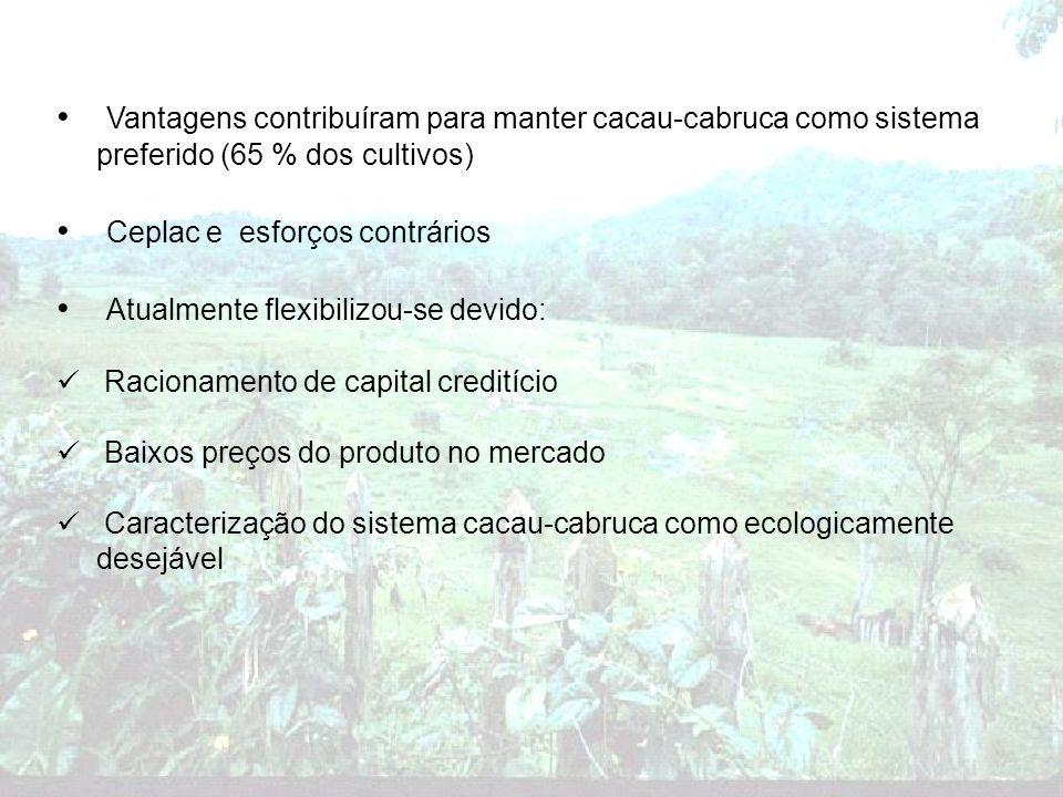 Vantagens contribuíram para manter cacau-cabruca como sistema preferido (65 % dos cultivos) Ceplac e esforços contrários Atualmente flexibilizou-se de
