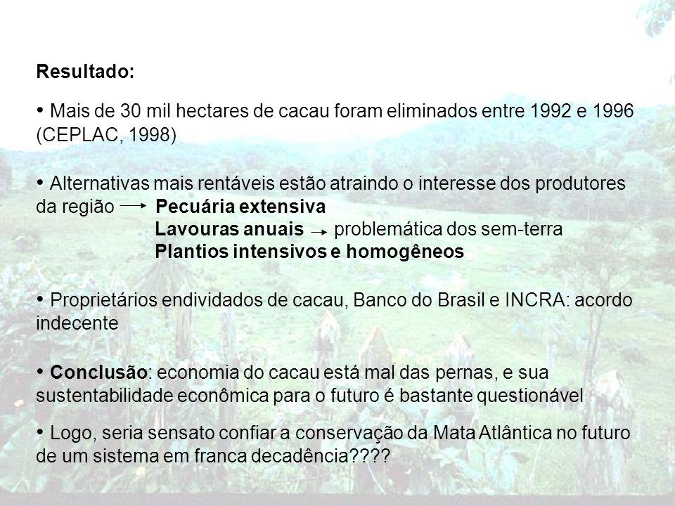 Resultado: Mais de 30 mil hectares de cacau foram eliminados entre 1992 e 1996 (CEPLAC, 1998) Alternativas mais rentáveis estão atraindo o interesse d