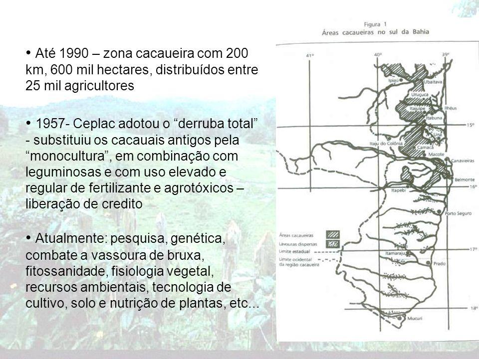 Até 1990 – zona cacaueira com 200 km, 600 mil hectares, distribuídos entre 25 mil agricultores 1957- Ceplac adotou o derruba total - substituiu os cac