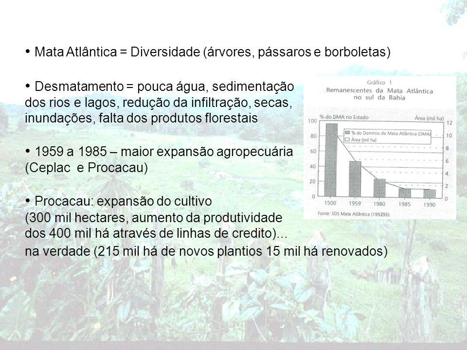 Ceplac (Comissão executiva do plano da lavoura cacaueira): pesquisa, extensão rural e reforma agrícola 1985 - restrição de capital = restrição no desmatamento Produtores vulneráveis (1985) – clima, preço e crédito 1985 – crise do cacau – perda pra Ásia – desemprego no sul da Bahia (250 mil), assédio aos recursos florestais e conversão em pastagens 1989 - 1990 – penúria geral – vassoura de bruxa Crinipellis perniciosus – fungo alastrante, risco de perda: 90% Combate: poda completa e queima