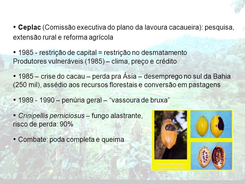Ceplac (Comissão executiva do plano da lavoura cacaueira): pesquisa, extensão rural e reforma agrícola 1985 - restrição de capital = restrição no desm