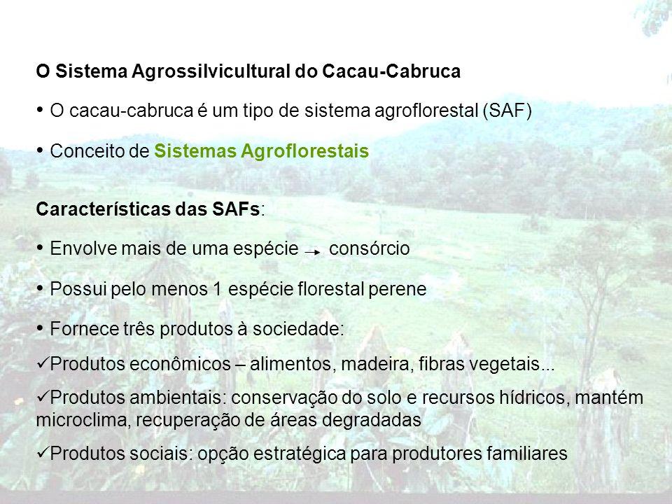 O Sistema Agrossilvicultural do Cacau-Cabruca O cacau-cabruca é um tipo de sistema agroflorestal (SAF) Conceito de Sistemas Agroflorestais Característ