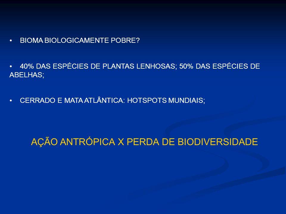 BIOMA BIOLOGICAMENTE POBRE? 40% DAS ESPÉCIES DE PLANTAS LENHOSAS; 50% DAS ESPÉCIES DE ABELHAS; CERRADO E MATA ATLÂNTICA: HOTSPOTS MUNDIAIS; AÇÃO ANTRÓ