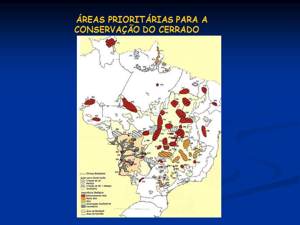 ÁREAS PRIORITÁRIAS PARA A CONSERVAÇÃO DO CERRADO
