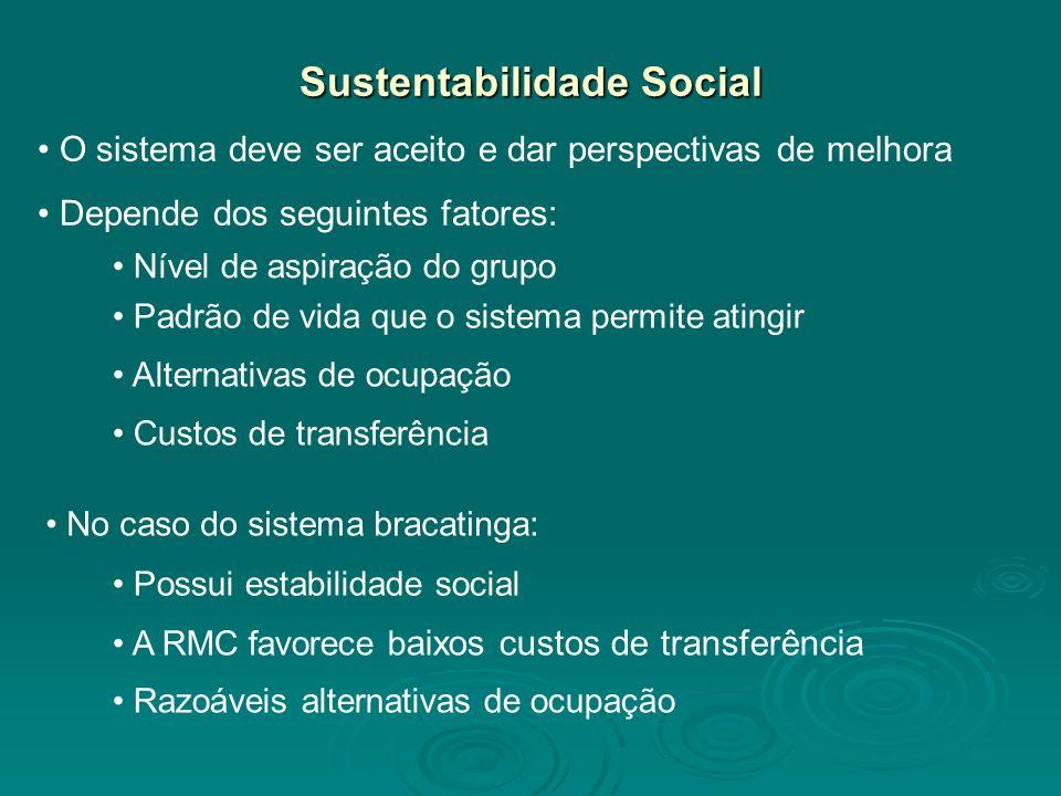Sustentabilidade Social O sistema deve ser aceito e dar perspectivas de melhora Depende dos seguintes fatores: Nível de aspiração do grupo Padrão de v
