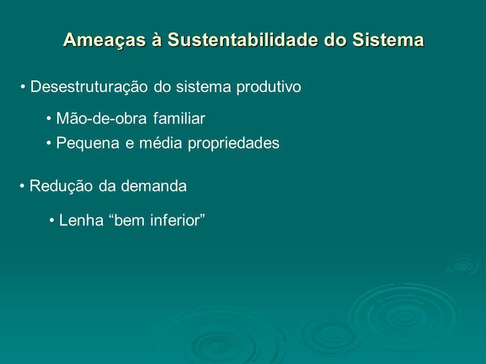 Ameaças à Sustentabilidade do Sistema Desestruturação do sistema produtivo Redução da demanda Lenha bem inferior Mão-de-obra familiar Pequena e média propriedades