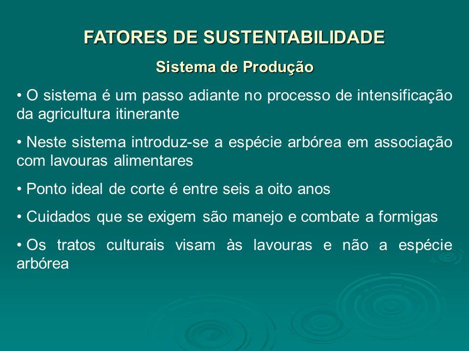 FATORES DE SUSTENTABILIDADE Sistema de Produção O sistema é um passo adiante no processo de intensificação da agricultura itinerante Neste sistema int