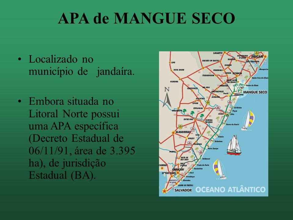 Turismo x Proteção Incentivos ao turismo ecológico As APAS também permitem atividades econômicas no seu território.
