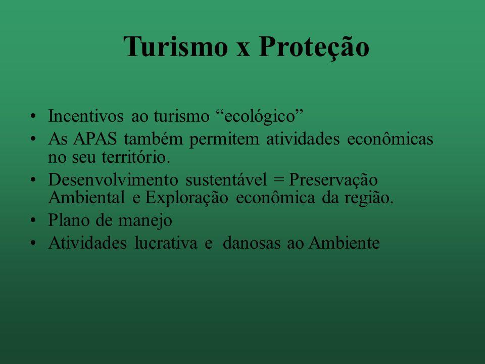 Impactos Na flora e na Fauna; Nas paisagens; Na vida do habitantes locais; Na geomorfologia.