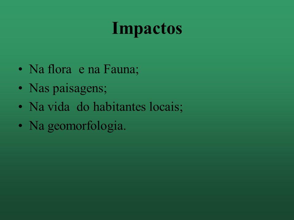 Apresentação A APA Guaibim/ Ponta do Curral localizada no município de Valença, no sul da Bahia, com uma área de 2.000 ha.