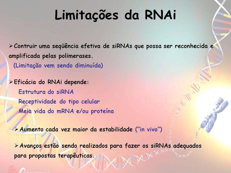 Contruir uma seqüência efetiva de siRNAs que possa ser reconhecida e amplificada pelas polimerases. (Limitação vem sendo diminuída) Limitações da RNAi