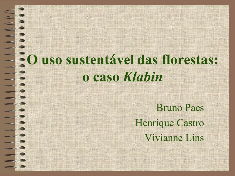 Histórico - Brasil Pós II Guerra Mundial Fatores que levaram ao crescimento: –Apoio do governo (BNDS) –Crescimento da demanda internacional –Grande oferta de madeira nativa (Araucárias)Araucárias Importador -> Exportador