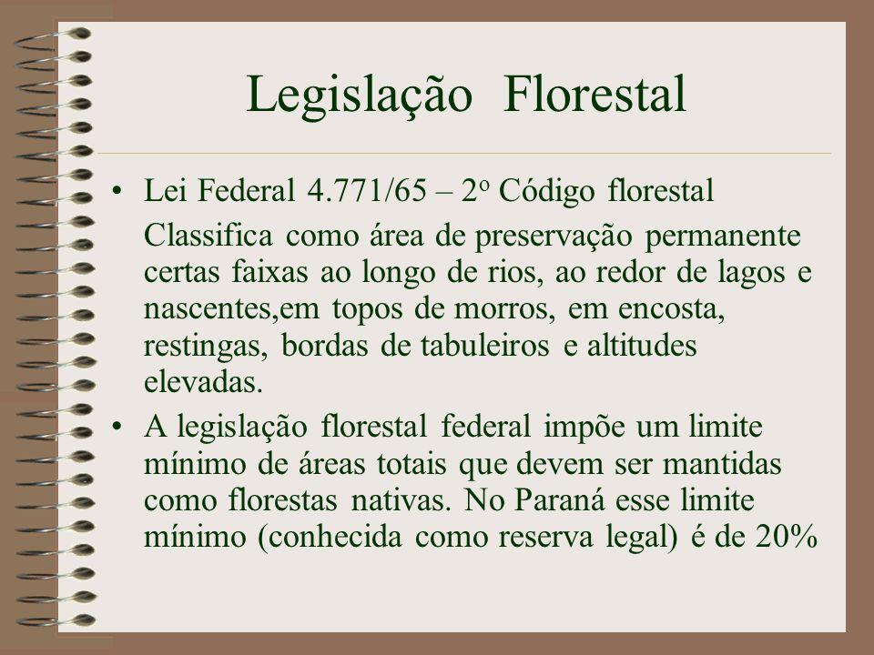 Legislação Florestal Lei Federal 4.771/65 – 2 o Código florestal Classifica como área de preservação permanente certas faixas ao longo de rios, ao red
