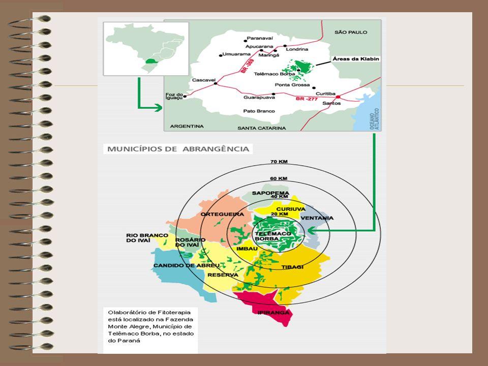 Klabin – Ações: Conscientização ecológica X Marketing ambiental Decisões voluntárias mercado externo Competição extrapreço