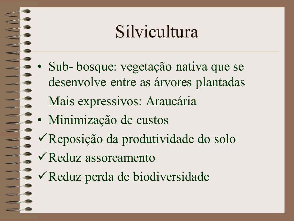 Klabin - Paraná 82.000 ha 38% mata preservada Terras de menor capacidade de uso * Sem gastos extras