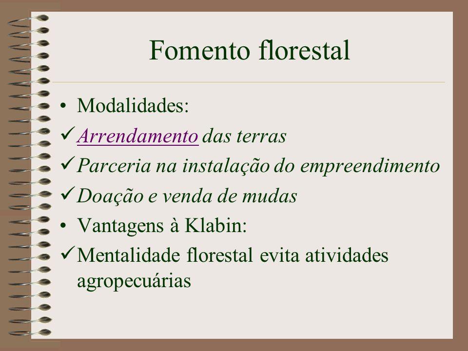 Arrendamento Principal forma de fomento Monocultura de árvores em terras de terceiros MELHOR PARA A EMPRESA!!!!!!