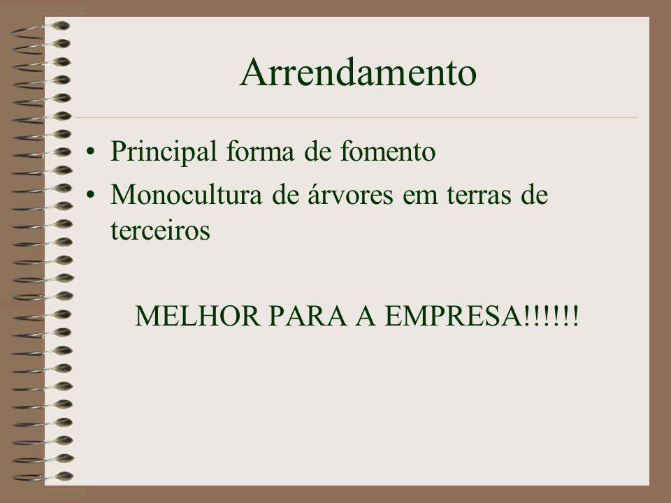Klabin - Atualidade Certificação Ambiental FSC – Forest Stewardship Council Paraná – desde 1998 Santa Catarina – em andamento PFNM – Produtos Florestais Não Madeireiros (fototerápicos) - 2001
