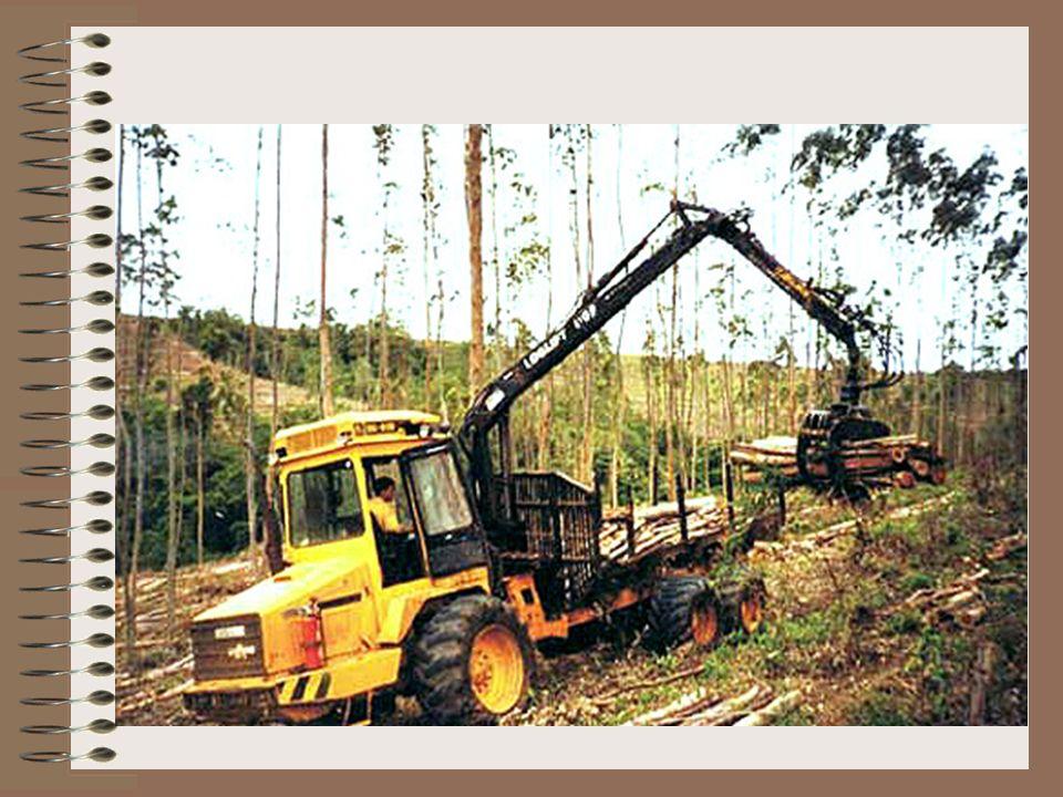 Indústrias Klabin de Papel e CeluloseKlabin 105 anos de existência 18 unidades industriais (17 no Brasil e 1 na Argentina) receita bruta superior a R$ 2,7 bilhões 7.324 empregados diretos e 4.757 contratados de terceiros sempre desenvolveu suas atividades industriais e florestais em harmonia com o meio ambiente 183 mil hectares de florestas plantadas de Pinus e eucaliptoPinus eucalipto