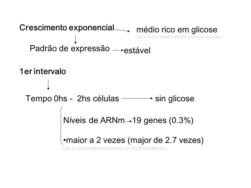Crescimento exponencial médio rico em glicose Fig.