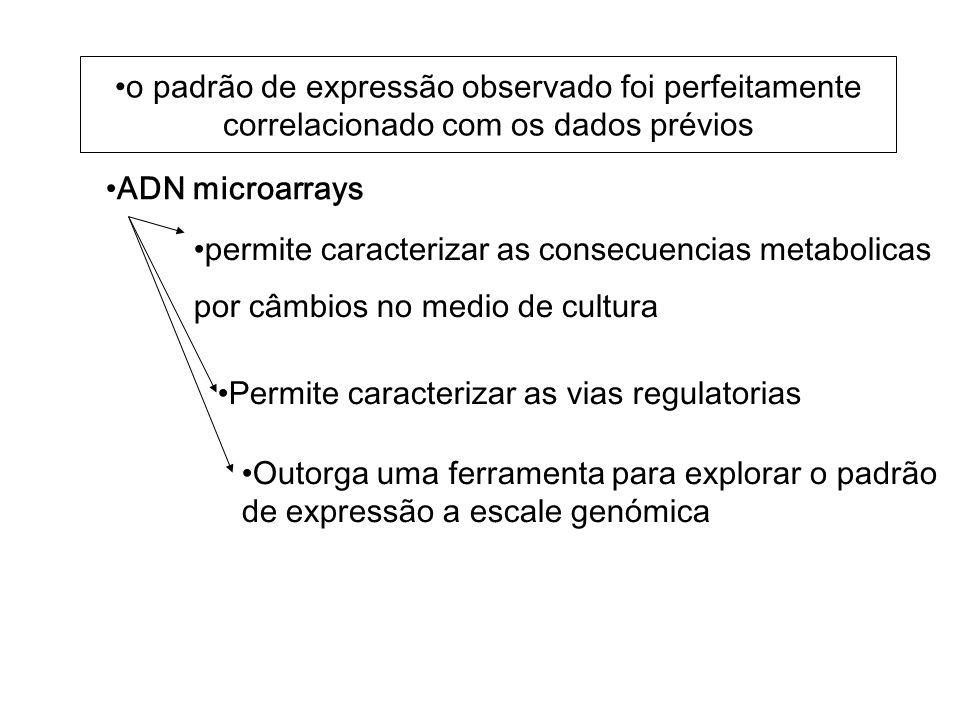 o padrão de expressão observado foi perfeitamente correlacionado com os dados prévios ADN microarrays Permite caracterizar as vias regulatorias Outorga uma ferramenta para explorar o padrão de expressão a escale genómica permite caracterizar as consecuencias metabolicas por câmbios no medio de cultura