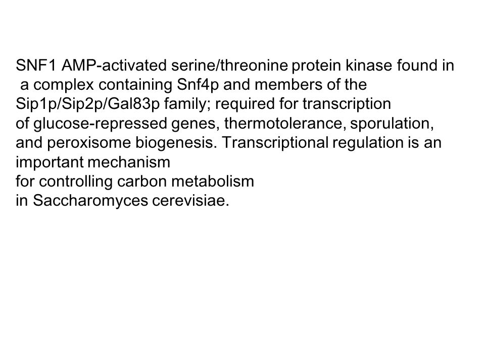 SNF1 AMP-activated serine/threonine protein kinase found in a complex containing Snf4p and members of the Sip1p/Sip2p/Gal83p family; required for tran