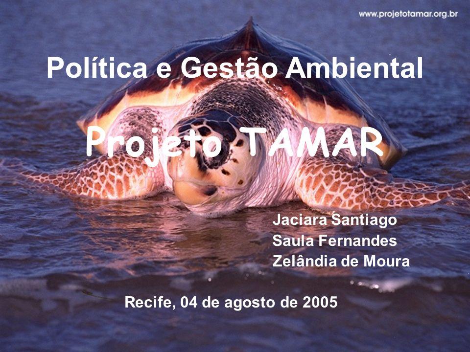 Política e Gestão Ambiental Projeto TAMAR Jaciara Santiago Saula Fernandes Zelândia de Moura Recife, 04 de agosto de 2005